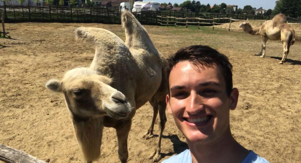 Croatian Sahara Zoo with camels